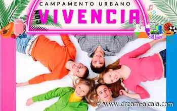 Campamento urbano por la diversidad funcional de ACADI - Dream! Alcalá