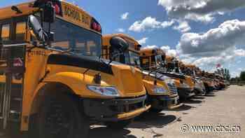 School bus stop-arm cameras a 'fantastic idea': Student Transportation Services Thunder Bay manager