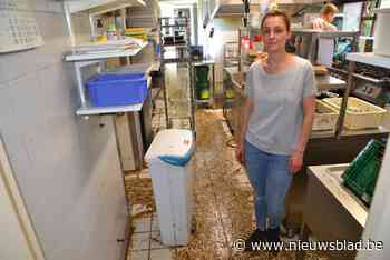 """Restaurant overspoeld met laag modder na onweer: """"Alles wat we nog aan eten hadden kan meteen in de vuilnisbak"""""""