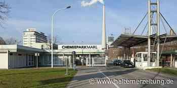 Brand im Chemiepark Marl – Feuerwehr bis zum Nachmittag im Einsatz - Halterner Zeitung