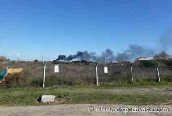 Indignación por vuelco ilegal de neumáticos y su incendio en Bernal Oeste - Perspectiva Sur