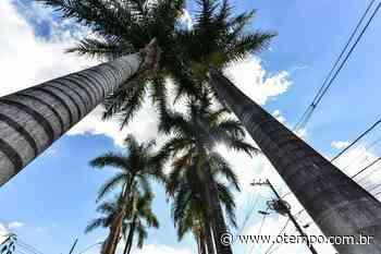 Em Betim, céu fica claro a parcialmente nublado nesta quinta-feira (17) - O Tempo