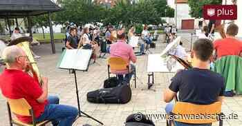 Musikkapellen und Chöre in Bad Waldsee hoffen auf Freiluft-Konzerte - Schwäbische