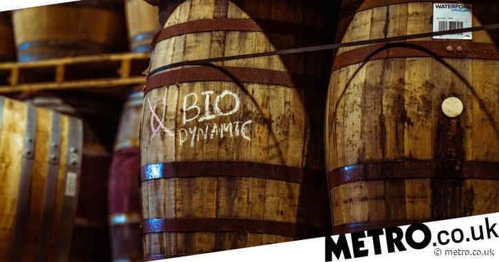 Ireland's first 'biodynamic' whisky will be bottled this summer