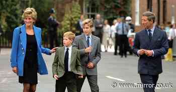 Princess Diana 'was worried she wasn't there enough for sons William and Harry'