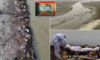 Covid bodies swell Ganges exposing 'massive discrepancy' between real death toll and official count - Daily Mail