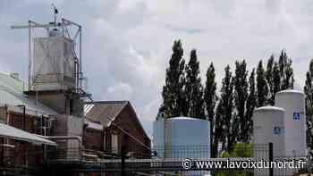 Quarante millions d'euros pour moderniser l'usine Minakem de Beuvry-la-Forêt - La Voix du Nord