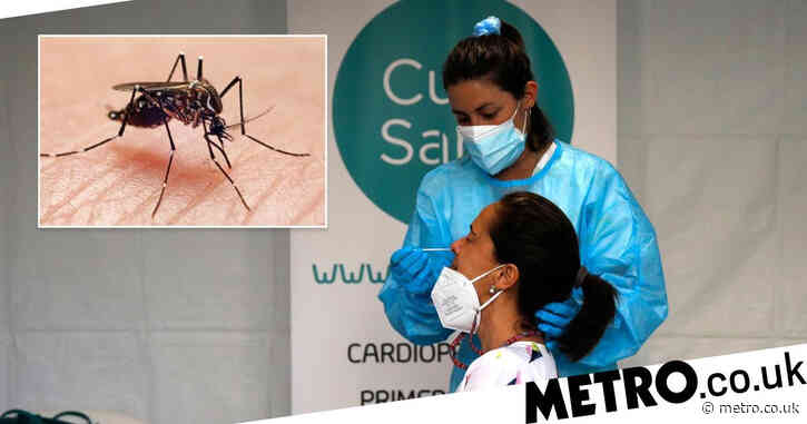 Patient tests positive for both West Nile virus and Covid 'in world first'