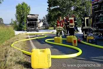 Nach Müllwagen-Brand: Schäden in der Natur? - Goslar - Goslarsche Zeitung