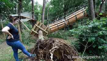 Près de Toulouse : importants dégâts à l'accrobranche Natura Game après le passage de la tempête - LaDepeche.fr