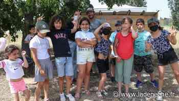 Toulouse : les enfants du quartier des Trois Cocus découvrent l'écopâturage - LaDepeche.fr