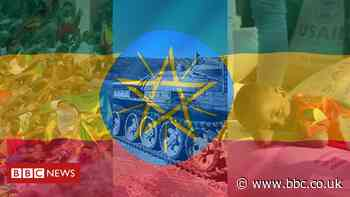 Why what's happening in Ethiopia matters for Africa