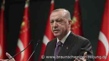 Erdogan plant Kinderkanal zur islamischen Früherziehung