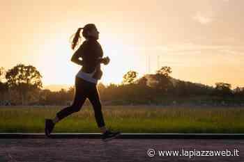 Noventa Padovana, plogging: strade pulite con il jogging ecologista - La PiazzaWeb - La Piazza