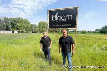 """Met Bloom heeft Aalst straks vierde zomerbar: """"Je kan hier tot rust komen met zicht op de velden"""""""
