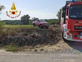 Incendi sterpaglie, due interventi dei vigili del fuoco di Asti - LaVoceDiAsti.it
