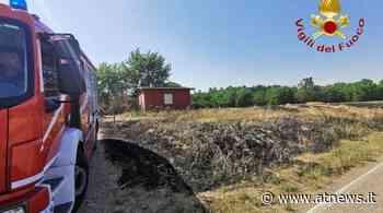 Incendi di sterpaglie ad Asti e a Castello d'Annone, in azione i Vigili del Fuoco - ATNews