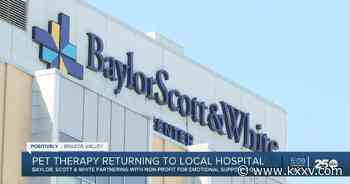 Pet therapy is returning to Baylor Scott & White this summer - KXXV News Channel 25
