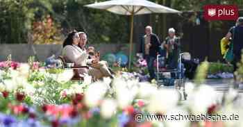 Bürgermeisterin: Bad Saulgau braucht keine Gartenschau - Schwäbische