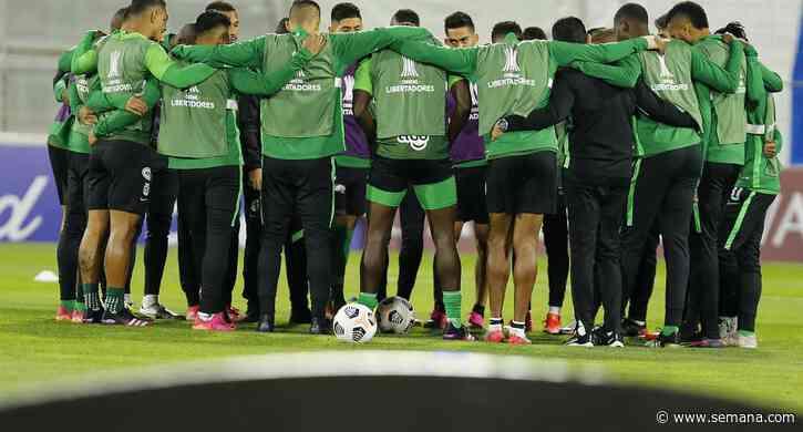 ¡Fichaje! Yerson Mosquera dejará Nacional para unirse al fútbol inglés - Revista Semana