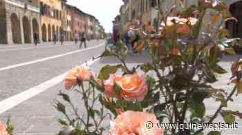 La Fiera di Cascina sarà recuperata a fine Giugno - Qui News Pisa