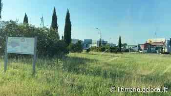 La guerra dell'erba infiamma i consiglieri di Cascina - Il Tirreno