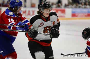 2020-21 WHL Season Review: Medicine Hat Tigers - Prince Albert Daily Herald