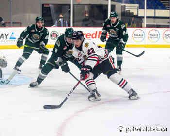 2020-21 WHL Season Review: Portland Winterhawks - Prince Albert Daily Herald