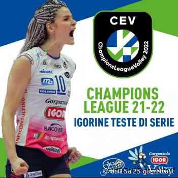 Novara e Conegliano teste di serie in Champions - La Gazzetta dello Sport