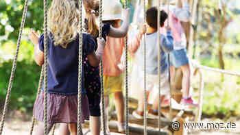 Kinder Betreuung Brandenburg: Oberverwaltungsgericht erklärt Verordnung zu Kita-Beiträgen für unwirksam – was bedeutet das für die Eltern? - moz.de