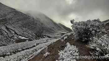 La nieve podría llegar a Jujuy en las próximas horas - todojujuy.com