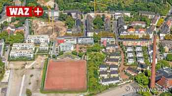 Essen: Fußballverein vermisst feste Zusage für Kunstrasen - Westdeutsche Allgemeine Zeitung