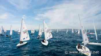 Italia Cup Laser, il follonichese Alessandro Fracassi sesto nella classifica generale - IlGiunco.net - IlGiunco.net
