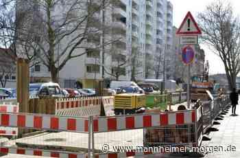 Rohrlachstraße in Ludwigshafen wird für 2,5 Millionen Euro umgebaut - Ludwigshafen - Nachrichten und Informationen - Mannheimer Morgen
