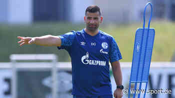 """FC Schalke 04: Grammozis bestätigt Suche nach weiterem Spieler - """"Schlüsselposition"""" bei S04 vak... - sport.de"""