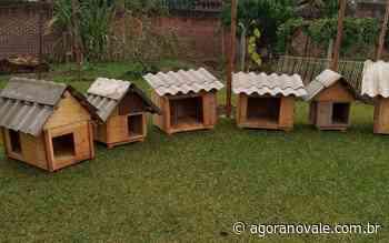 Apenados do Presídio Estadual de Arroio do Meio confeccionaram mais de 300 casinhas para cães de rua I Agora n - Agora no Vale