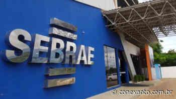 Sebrae é parceiro da 1ª Feira de Mulheres Empreendedoras de Porto Nacional - Conexão Tocantins
