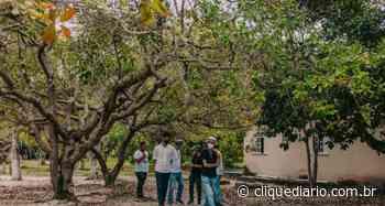 Ministério Público e Município de Cabo Frio ajuízam ação para remover ocupações irregulares do Parque Natural Municipal do Mico Leão Dourado - Clique Diário