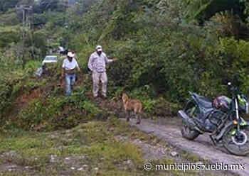 En vigilancia, dos comunidades de Ajalpan por riesgos de deslave - Municipios Puebla