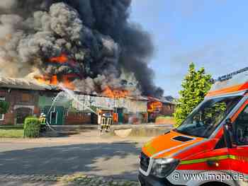 Großbrand im Norden: Bauernhaus samt Stallungen in Flammen - Hamburger Morgenpost