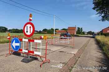 Wegdek komt omhoog door hitte in Peer (Peer) - Het Belang van Limburg Mobile - Het Belang van Limburg