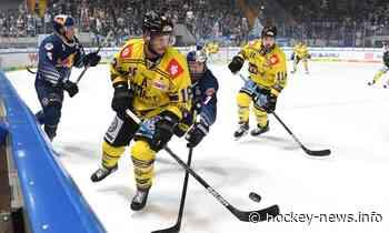 DEL: Krefeld Pinguine verpflichten erfahrenen schwedischen Defender! – Hockey-News.info - Hockey-News.Info Österreich