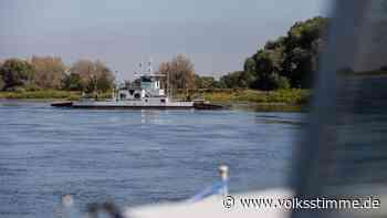 Leichtsinn: Kinder springen in den Elbe-Havel-Kanal bei Genthin - Volksstimme