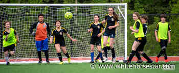 Whitehorse Daily Star: First tourney held on new artificial turf - Whitehorse Star