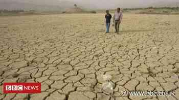 Climate change: UN virtual talks make little progress