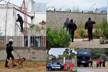 La intensa búsqueda de Guadalupe en imágenes - Agencia de Noticias San Luis