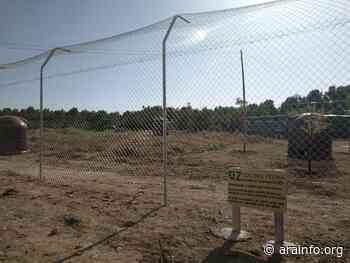 El Guano, un lugar donde los gatos pierden la esperanza en el ser humano - AraInfo   Achencia de Noticias d'Aragón