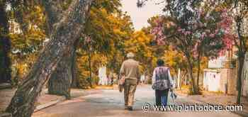 El Covid-19 hunde la esperanza de vida en España a mínimos de 2012 - PlantaDoce
