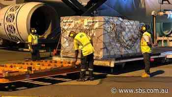 Australian medical team will be deployed to Fiji to help fight coronavirus outbreak - SBS News