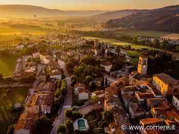 Torgiano, un vino e un olio che meritano due musei - Corriere della Sera